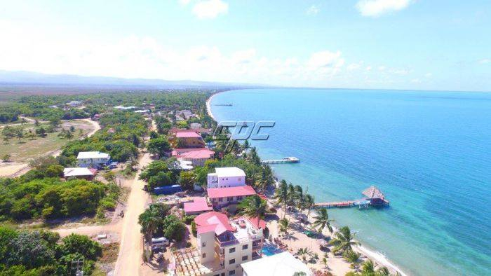Best Real Estate Experts in Belize
