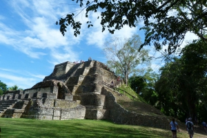 From Belize City: Altun Ha and Belize Zoo Adventure