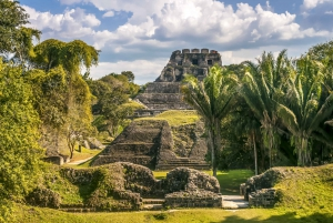From San Ignacio: Xunantunich Mayan Tour & Optional Combos
