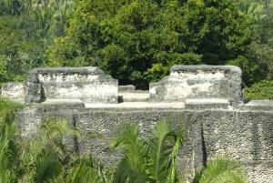 From San Ignacio: Xunantunich Mayan Tour & Optional Combos