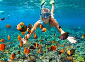 Sapodilla Caye Marine Reserve