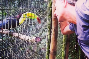 The Belize Zoo Wildlife Adventure & City Tour