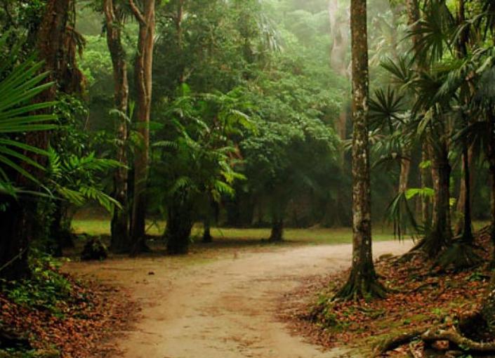Sarstoon Temash National Park
