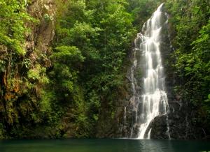 Thousand Foot Falls: A Majestic Waterfall