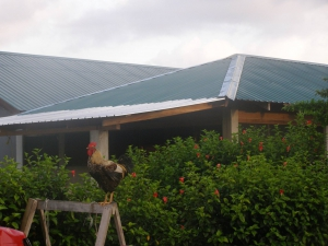 Tutzil Nah Cottages