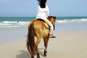Bodrum: Horseback Riding Experience