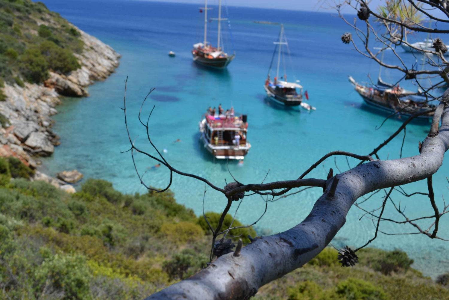 Full-Day Orak Island Boat Trip from Bodrum