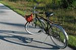 Bodrum Bike Festival