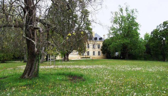 48 Hours at Château Siaurac, Bordeaux