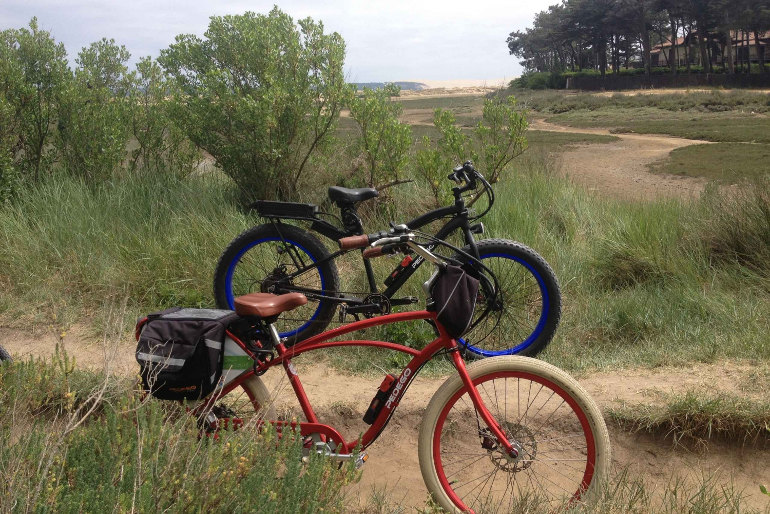 Bordeaux Full-Day Electric Bike Rental