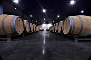 Bordeaux: Medoc Small Group Afternoon Wine Tour