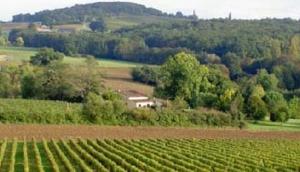 Château Laulerie