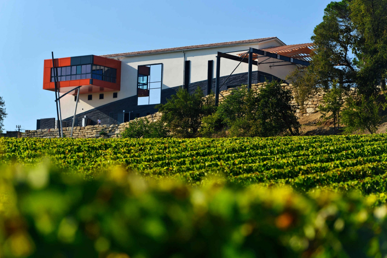 FD Best Of Tour - Wine châteaux with Lunch and Tasting