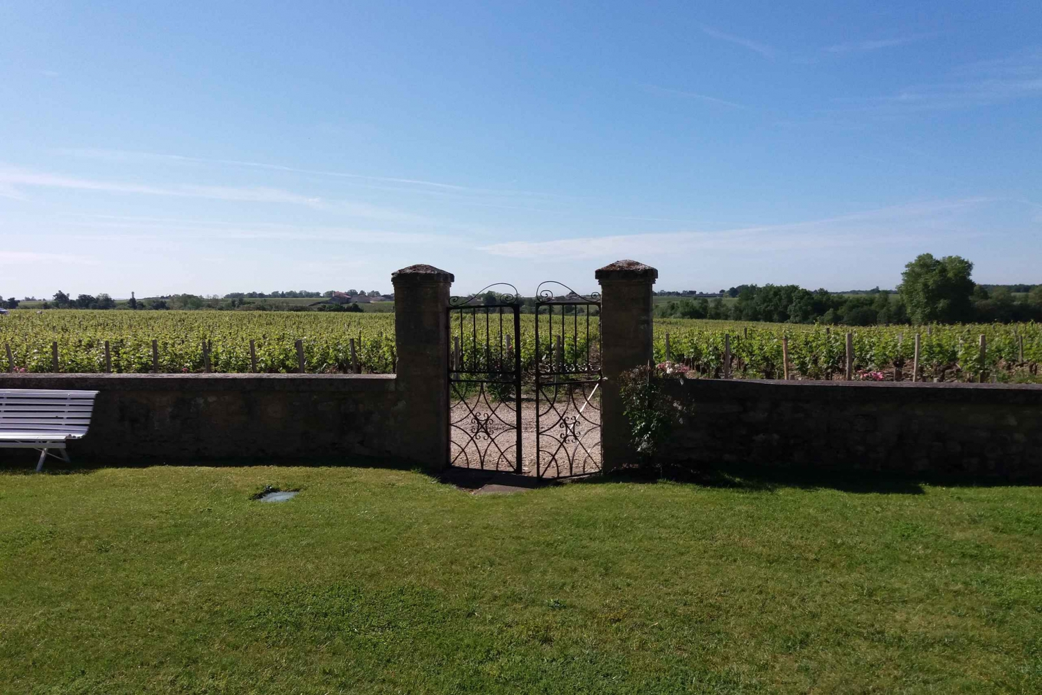 From Afternoon Wine Tour in the Medoc Area