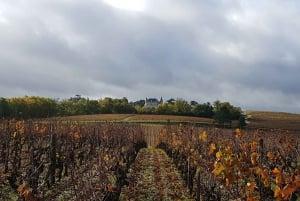 From Bordeaux: Breakfast & Wine Morning Tour in Medoc