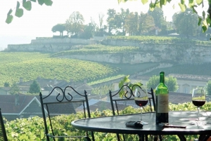 From Bordeaux: Private Wine Tour in Medoc