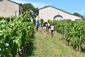 From Bordeaux: Saint-Émilion Food and Wine Tour