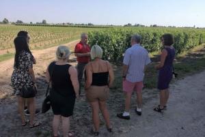 From Bordeaux: Saint-Emilion Private Wine Tour