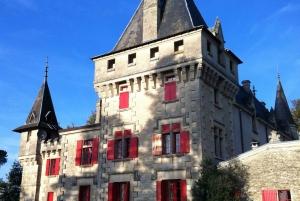 From Bordeaux: Saint-Emilion Wine Tasting Experience
