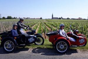 From Bordeaux: Saint-Emilion Wine Tour in a Sidecar