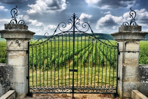 From Full-Day Private Saint-Emilion Wine Tour