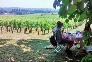 From Saint-Émilion Food and Wine Tour