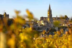 From St. Emilion Village Half-Day Wine Tour