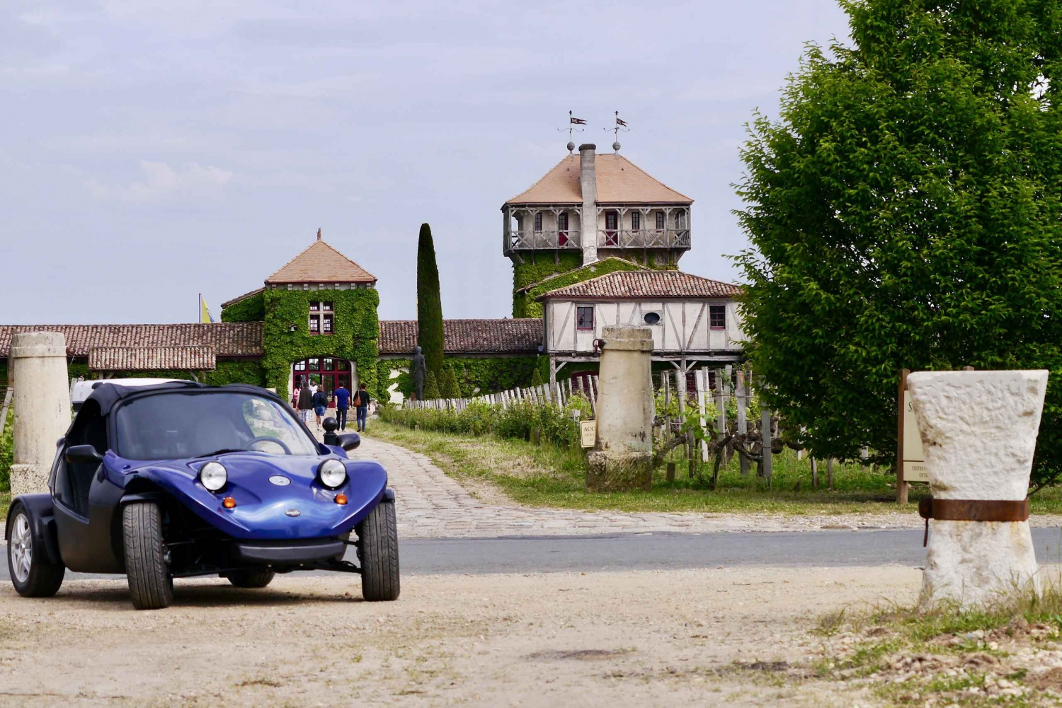 Full-Day Buggy Wine Tour in Montesquieu's Vineyard