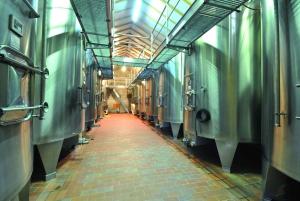 Full-Day Medoc Wine Tour
