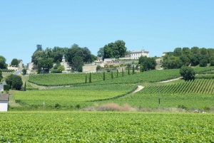 Morning Wine Tour of Saint-Emilion