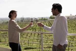 Saint-Emilion: Guided Winery Visits and Picnic