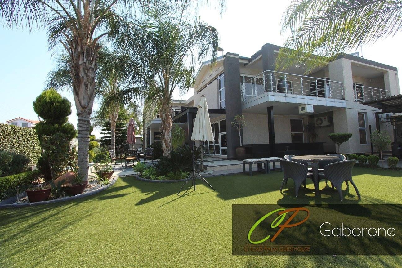 Cycad Palm Gaborone