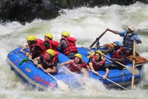 From Kasane: Full-Day White Water Rafting