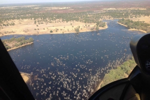 From Kasane: Scenic Helicopter Flight over Chobe