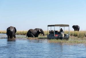 From Livingstone & Victoria Falls: Rafting & Safari Combo