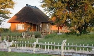 Grasslands Bushman Lodge & campsite
