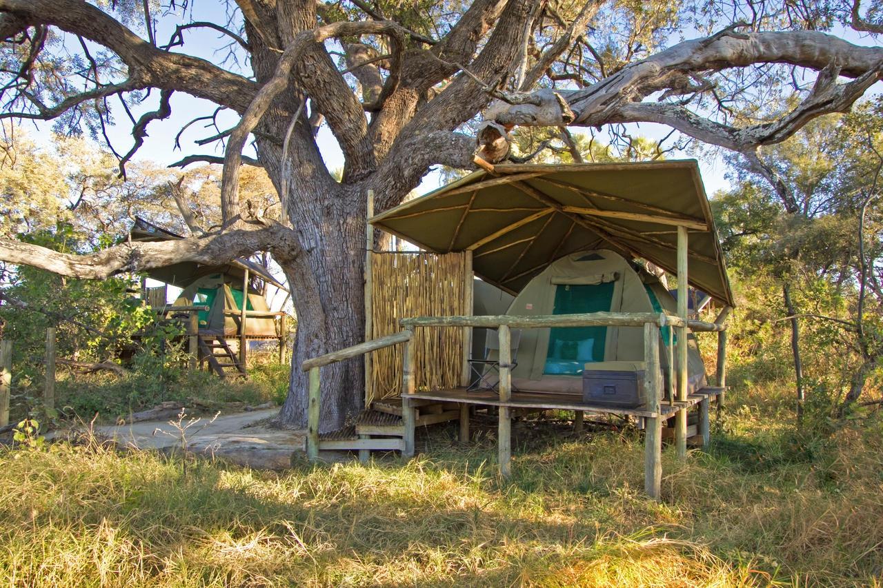 Oddball's Camp