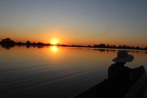 Okavango Delta: Mokoro Day Tour