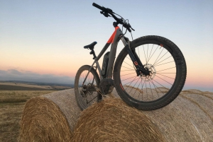 South Downs or Coastline E-Bike Tour