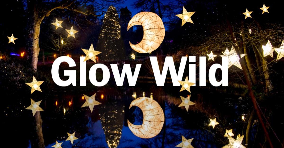 Glow Wild 2019
