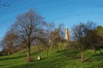 Brandon Hill and Cabot Tower