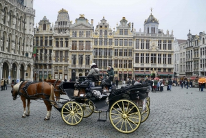 Brussels: Private Tour from Zeebrugge