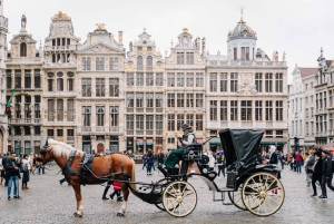Brussels: Private Tour of the European Quarter