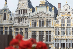 Brussels: Private Tour of the Upper and Lower City