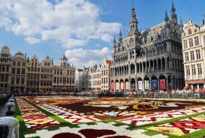 From Amsterdam: Private Sightseeing Tour to Brussels