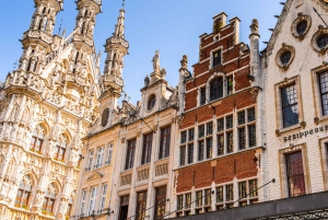 From Brussels: Leuven Day Trip by Train