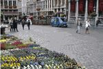 Grand Place flower market