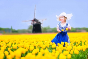 Keukenhof Tulips and Delft Tour from Brussels