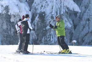 Borovets: Skiing or Snowboarding Group Lesson for All Levels