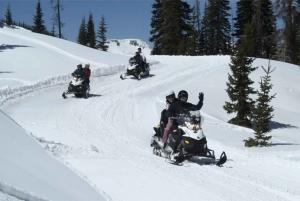 Borovets: Snowmobile Adventure